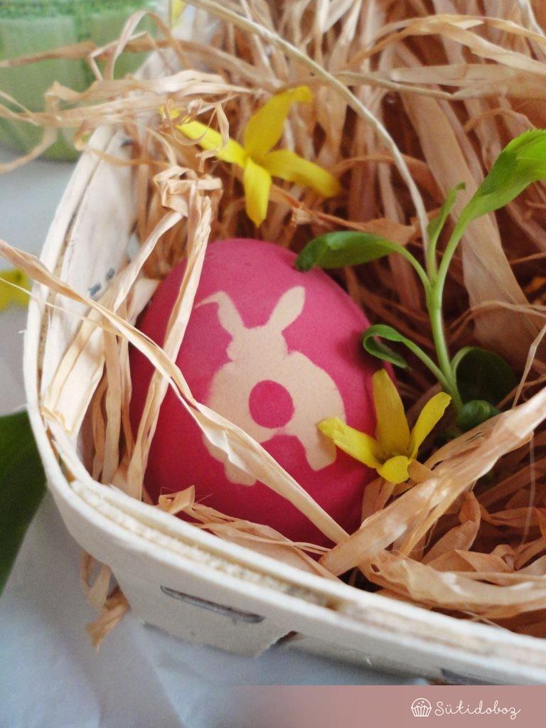 Nyuszis tojás:)