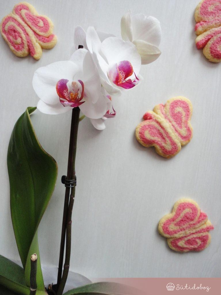Pillangó keksz