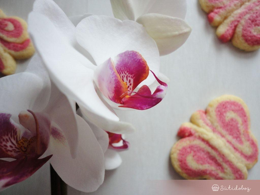 Pillangós keksz