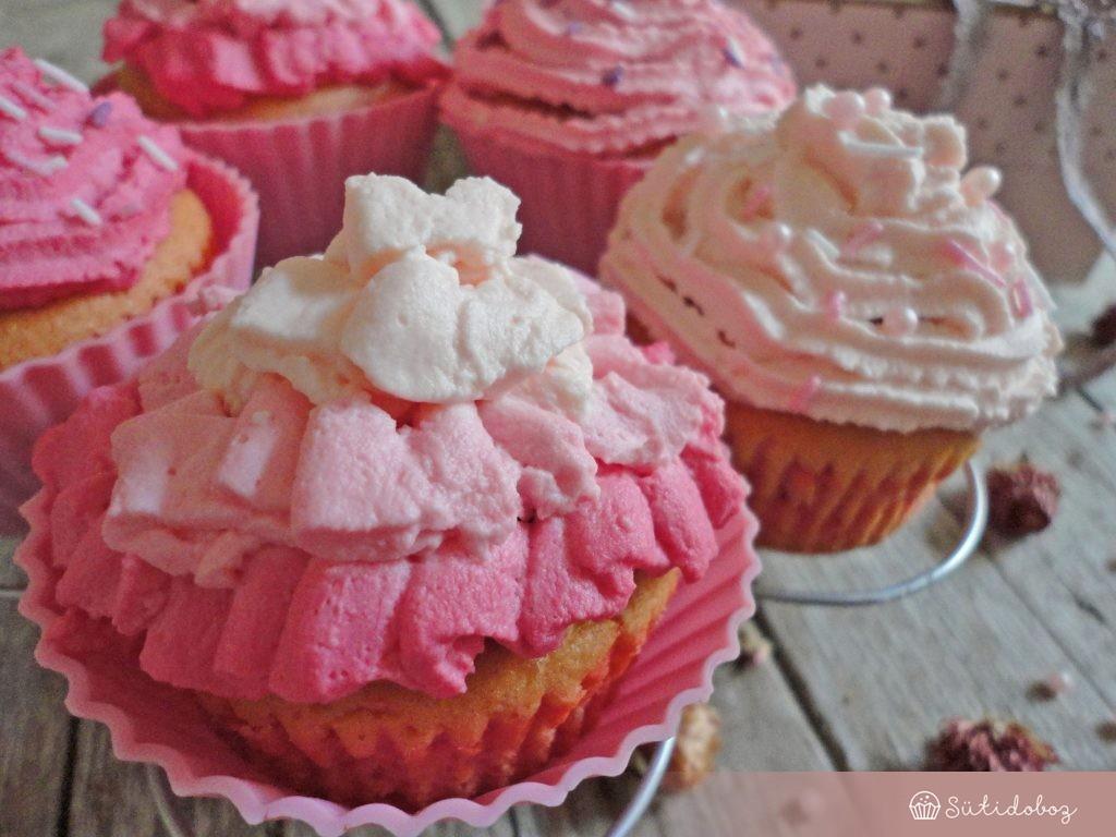 Ombre cupcake
