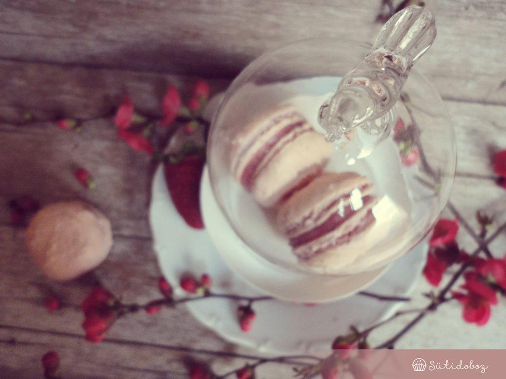 Rózsás macaron epres fehércsokival