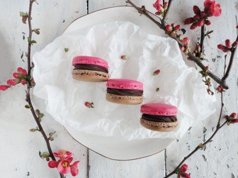 Csokis-tonkababos macaron málnával